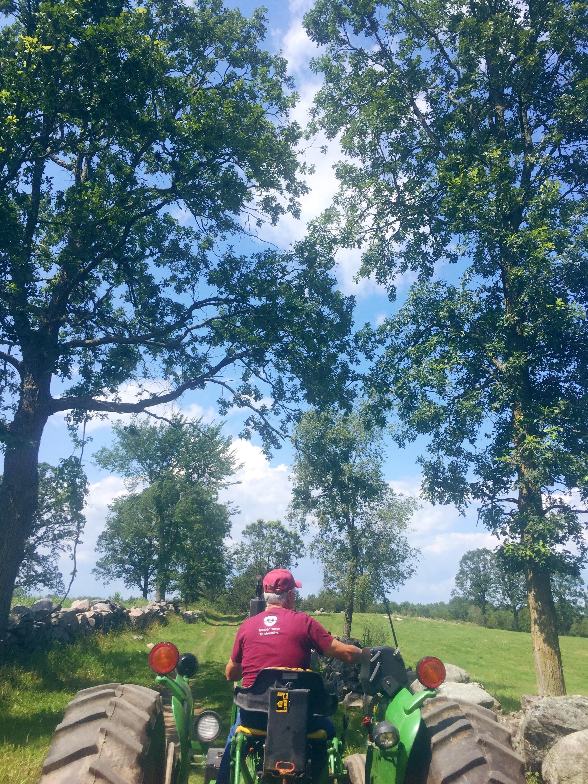 tractor-pasture